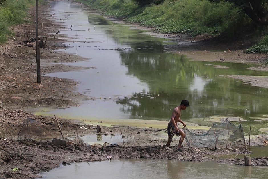 Житель деревни гуляет по глине, ища рыбу в Клонге 11 в районе Памту Тани в районе Лам-Лука Ка после того, как жаркая погода покинула канал, почти высохший 24 апреля.